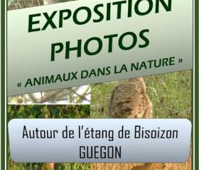 Exposition de photos à l'étang de Bisoizon